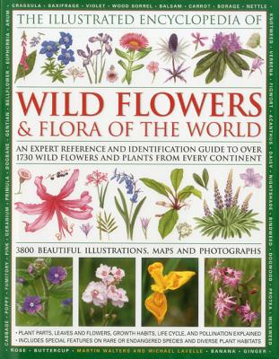 Illustrated Encyclopedia of Wild Flowers & Flora of the World By Lavelle, Michael